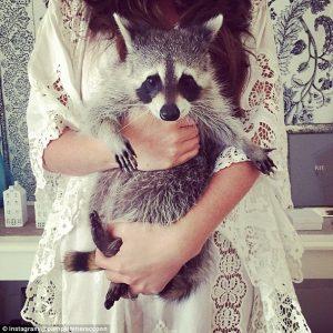 profilo instagram animali